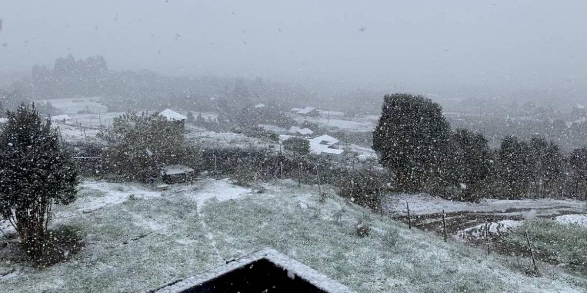 Nieve inusual en Chiloé: así lo registraron los usuarios en redes sociales