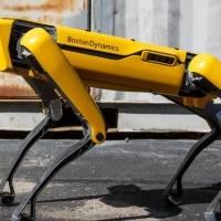 Video: Boston Dynamics y su perro robot causan terror en Canadá por un paseo nocturno