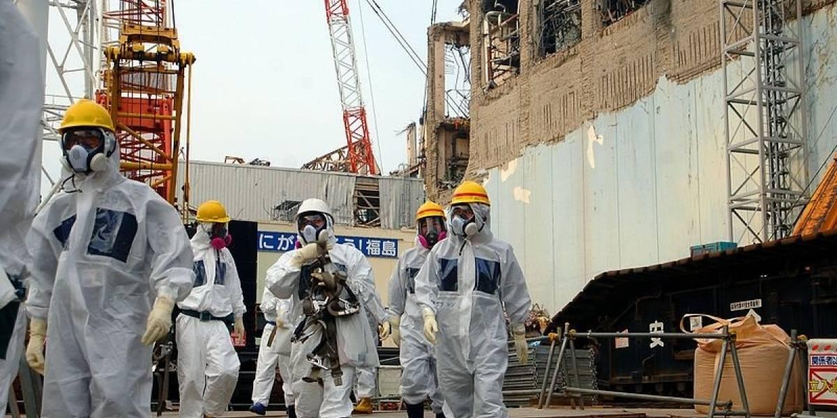 Japón.- El Gobierno y la compañía energética TEPCO tendrán que pagar 8 millones de euros por el desastre de Fukushima