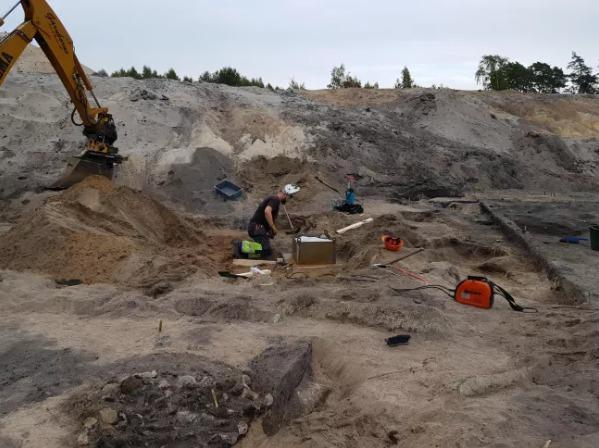 Trabajos arqueológicos en Suecia, donde hallaron al perrito de la Edad de Piedra.