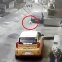 Un perro callejero entra a una casa y lo arrojan desde segundo piso