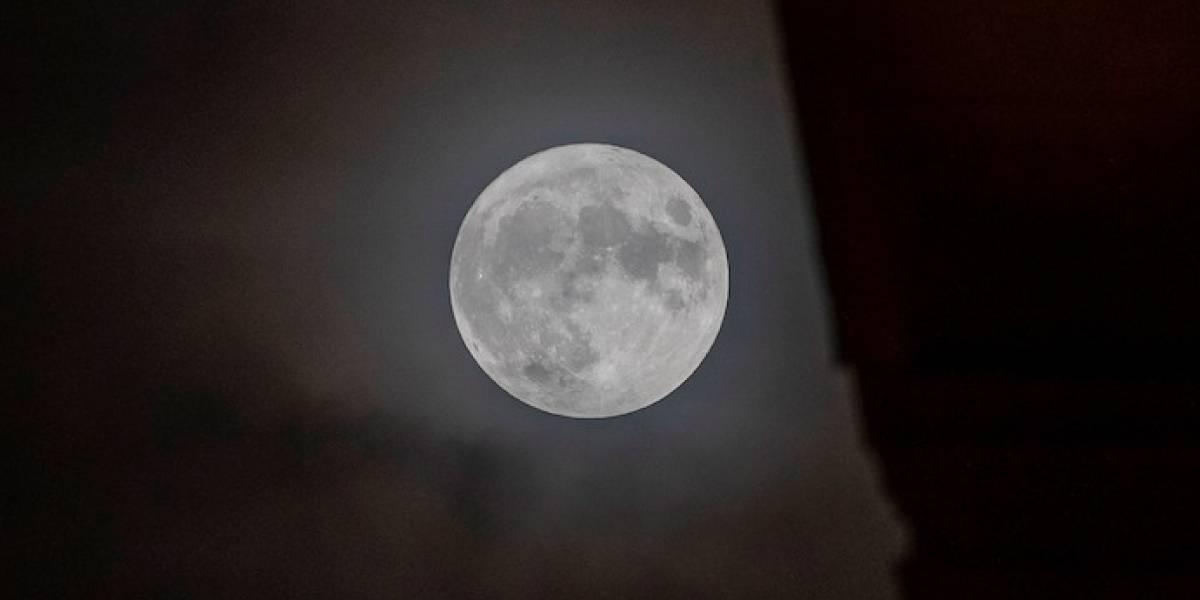 """Este 31 de octubre se podrá ver la """"Luna Azul"""" y no se repetirá hasta 2023"""