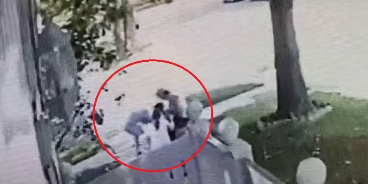 Vídeo registra ato heroico de pai salvando filha de ataque de pitbull