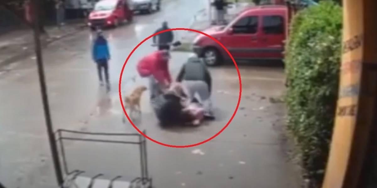 Vídeo registra momento desesperador em que pitbull ataca criança de 7 anos na Argentina