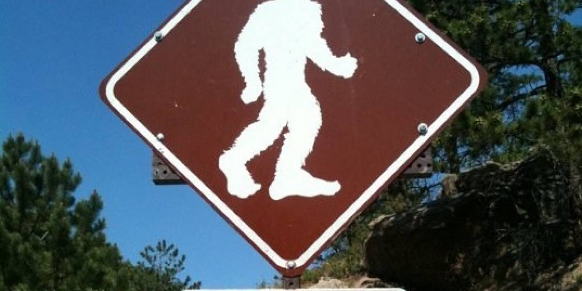 Condado de Washington (EUA) proíbe moradores e turistas de matar o 'pé-grande'