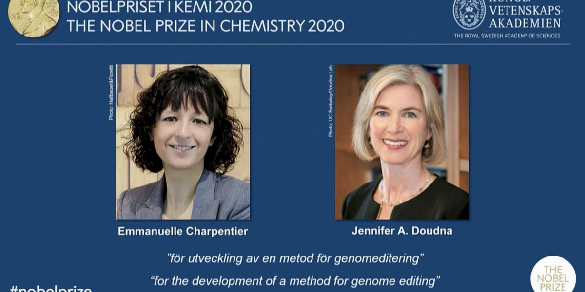 Nobel mostra que  lugar de mulher é também no laboratório