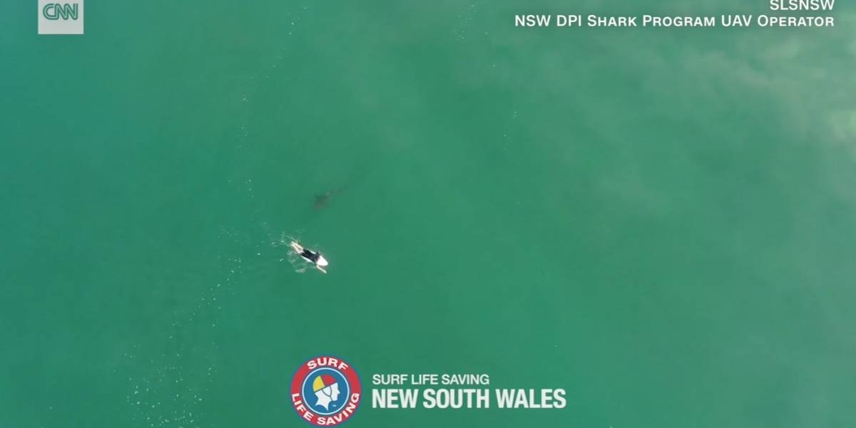 Vídeo impactante registra momento em que tubarão se aproxima de surfista desavisado