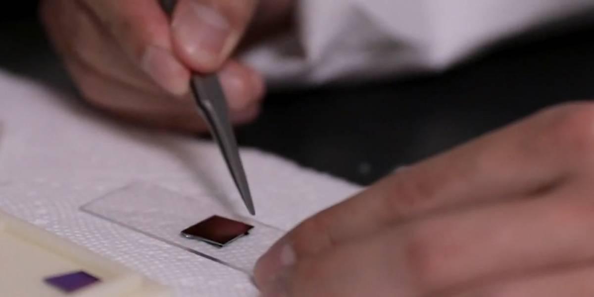 Los chips de borrado automático: la nueva tecnología que evita la falsificación de equipos electrónicos