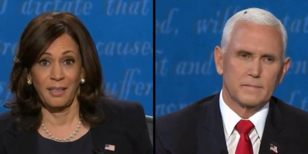 (VIDEO) Mosca aterrizó en la cabeza del vicepresidente Mike Pence en pleno debate