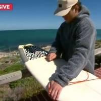 Tubarão morde prancha de surfista próximo da costa e alerta é emitido por autoridades australianas