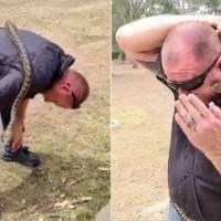 Vídeo mostra homem levando bote no rosto de píton fêmea agressiva ao gravar live no Facebook