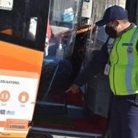 Disminuye en 49% la cifra de accidentes de tránsito en Quito durante el feriado