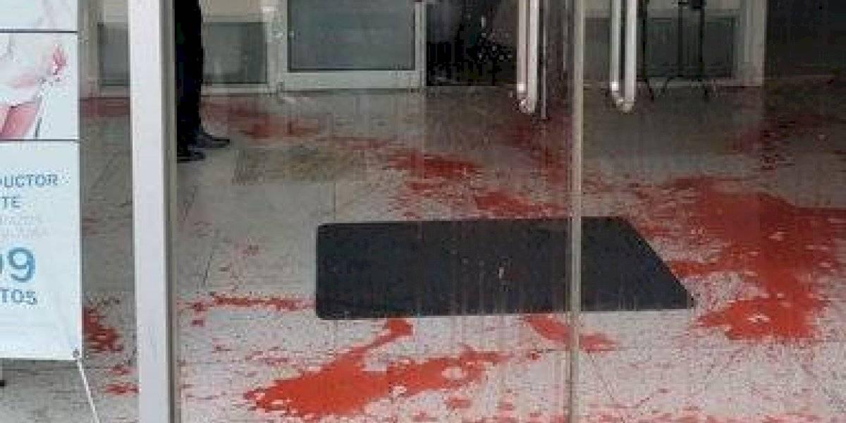 Procuradora de las mujeres denuncia agresión y vandalismo en su oficina