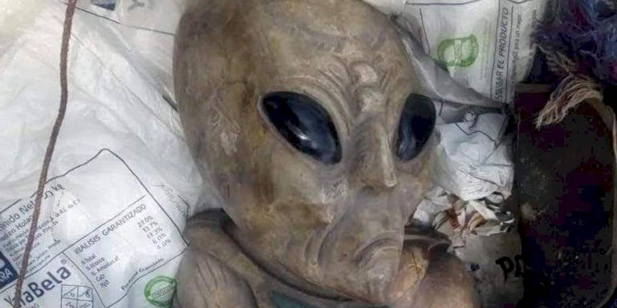 Figuras de extraterrestres en obras del Tren Maya son falsas: Fonatur