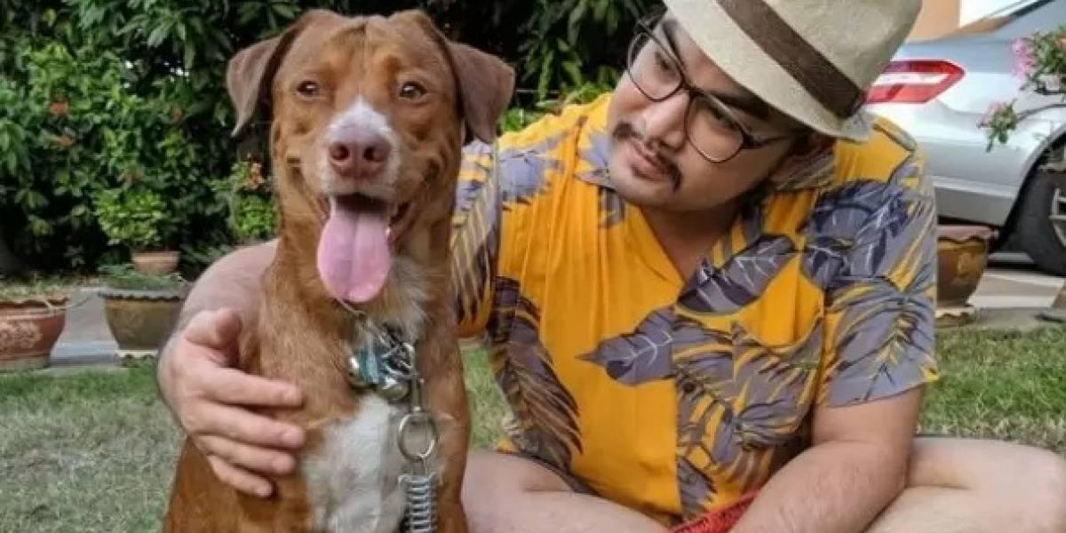 Após salvar cachorro desesperado em alto mar, homem resolve adotá-lo