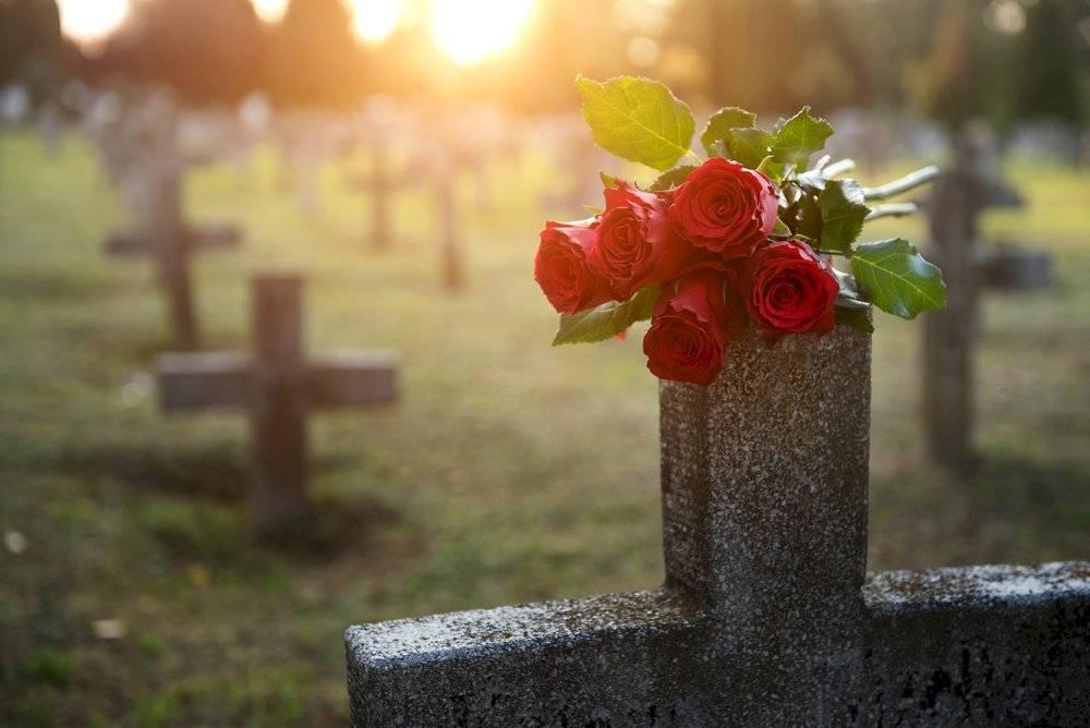 cementerio de fetos