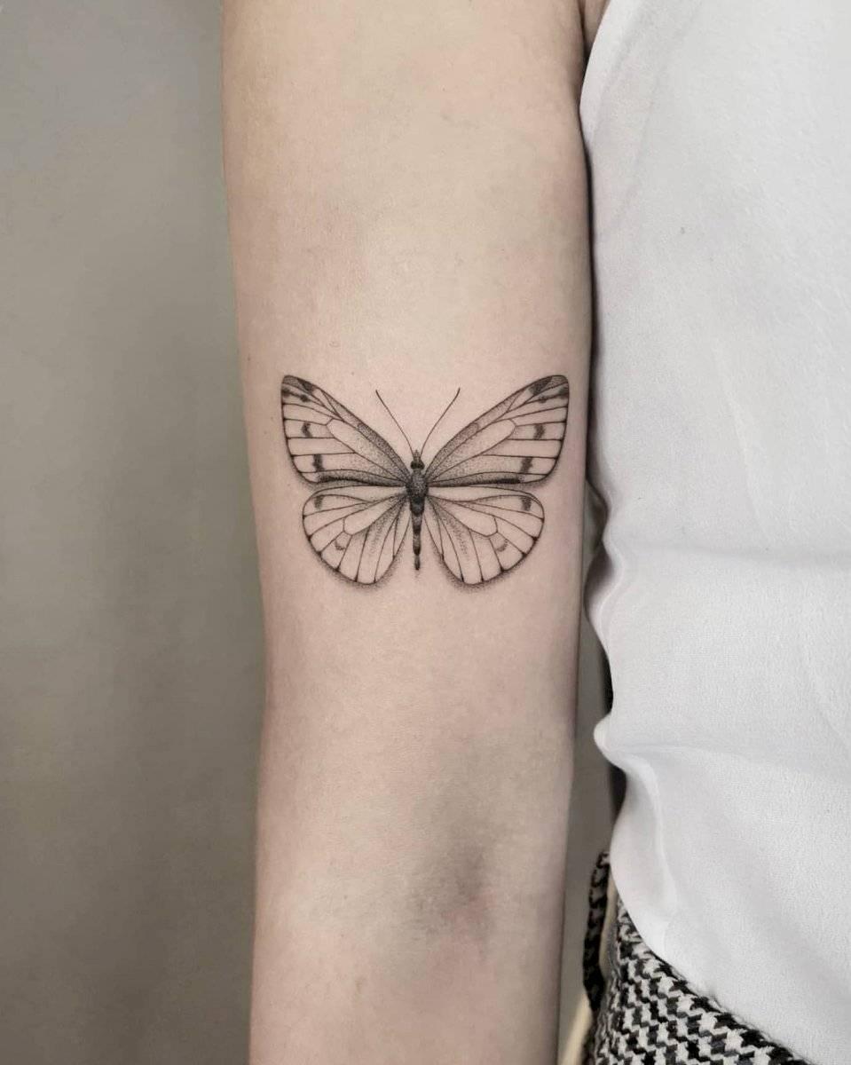 Una mariposa es ideal para representa volar con libertad