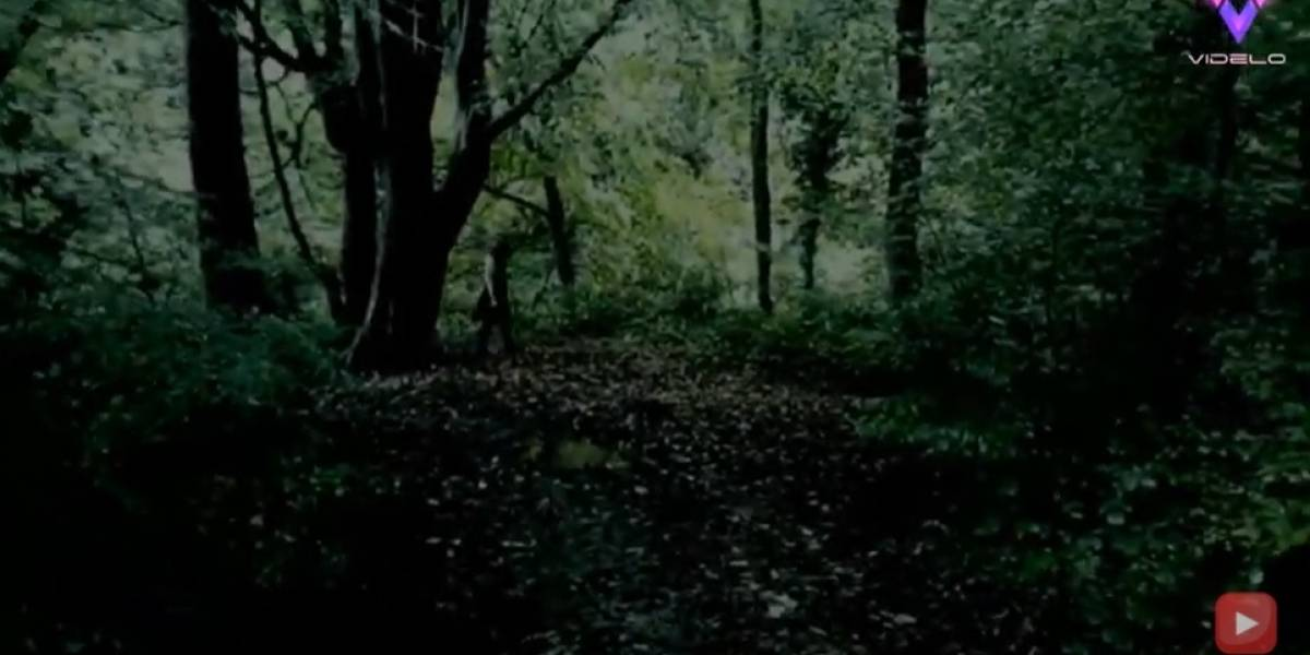 Desconecta.- Un cazador de fantasmas afirma haber visto a 'la niña fantasma de ojos negros' en el bosque de Cannock Chase, Inglaterra