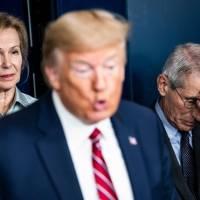 COVID-19: Al máximo experto mundial le preocupa algo sobre la recuperación de Donald Trump