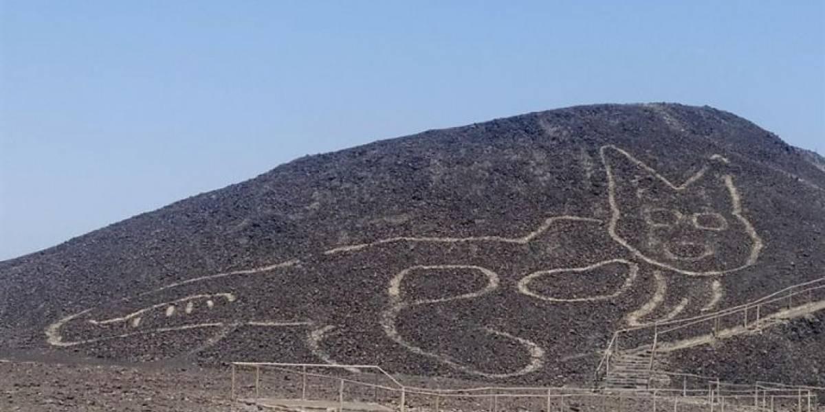 Descubren en Nazca un 'gatito' de 37 metros que existió hace más de 2.000 años
