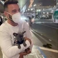Ricky Martin adopta un perrito french bulldog