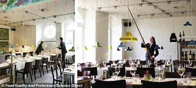 El experimento de la iluminación en la gastronomía.