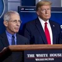 Trump llama idiotas a Fauci y expertos de salud en Estados Unidos