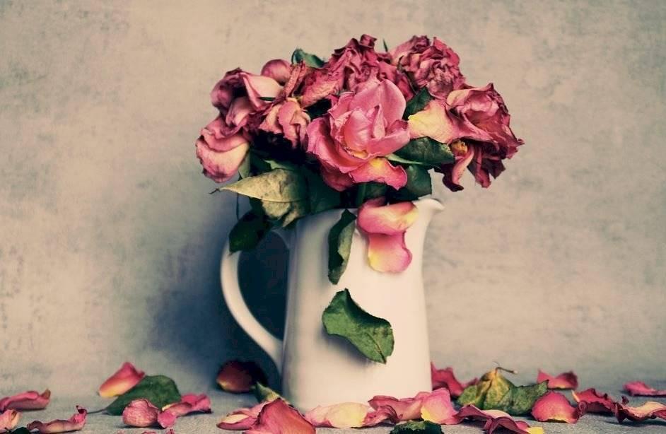 Usar flores secas en la decoración te permite cuidar el medio ambiente.