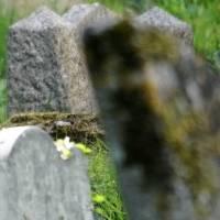 COE Nacional exhorta a municipios el cierre de cementerios por el feriado del Día de los Difuntos