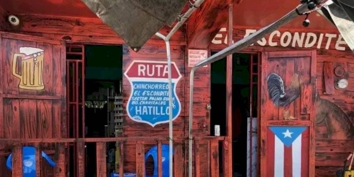 Clientes hasta trepan árboles para esconderse de las autoridades por violar orden ejecutiva en Hatillo