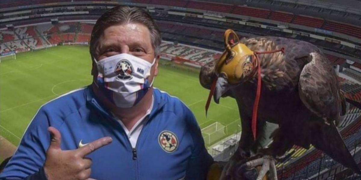 """¿Por qué Miguel """"Piojo"""" Herrera es el especialista en Liguillas?"""