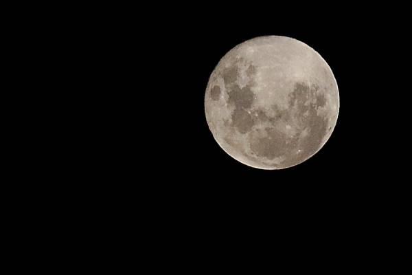Luna azul: el fenómeno astronómico que se podrá ver la noche de Halloween