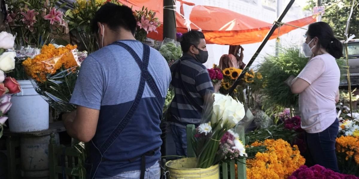 Desalentadoras, las expectativas de venta de floristas este Día de Muertos