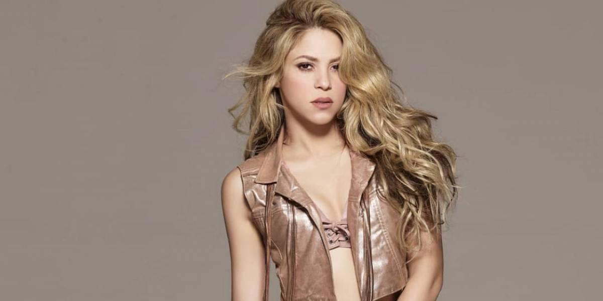 Shakira presenta al nuevo integrante de su familia