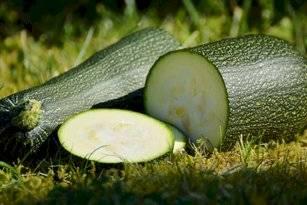 El zucchini contiene minerales y oligoelementos como el fósforo, el potasio, el magnesio y el calcio.