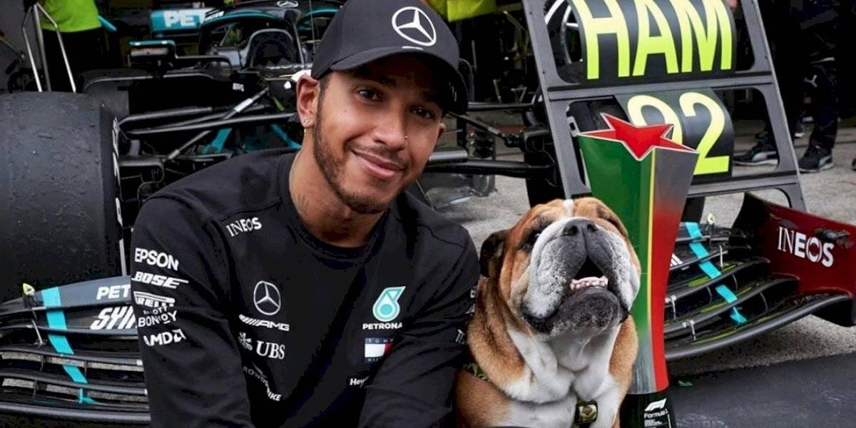 Mercedes ficha a mascota de Lewis Hamilton, pero él sigue sin renovar