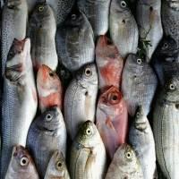 China vuelve a encontrar coronavirus en pescado de Ecuador y carne de Brasil