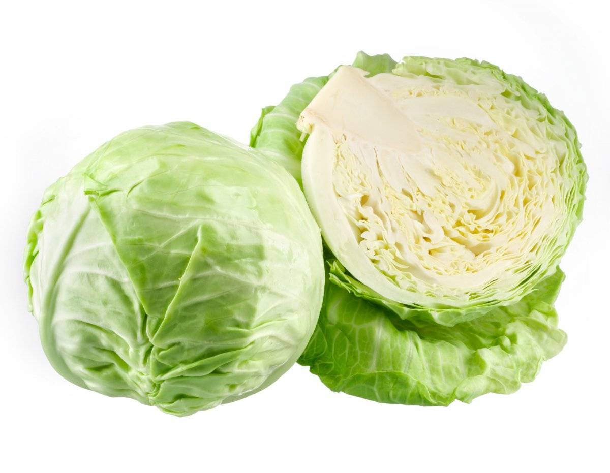 La col verde es rica en vitaminas y nutrientes