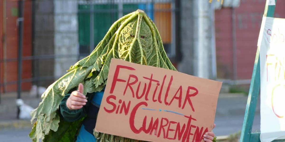 """""""Nalcaman"""" fue escuchado: la comuna de Frutillar salió de cuarentena"""