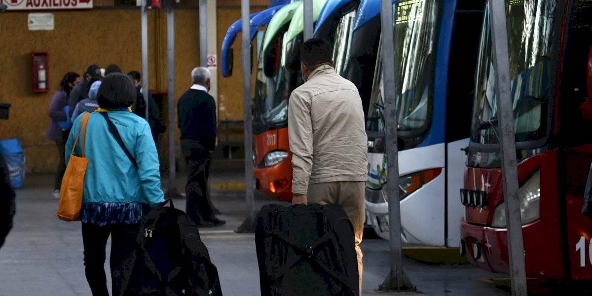 Bus en tiempo de pandemia: las precauciones que debes tomar para viajar entre regiones