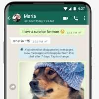 Dica de como ativar e desativar 'mensagens temporárias' no app WhatsApp
