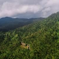 Hallan en buen estado de salud a cinco turistas desaparecidos en El Yunque