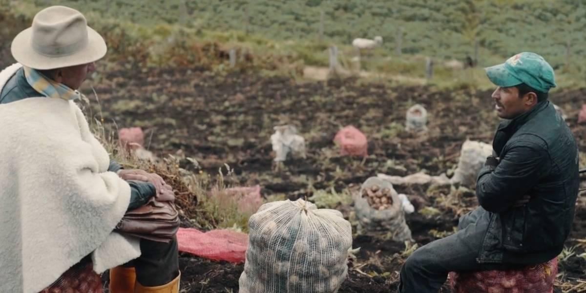 'Sumercé', un documental que le pone la lupa a la protección de los páramos desde la voz de tres líderes