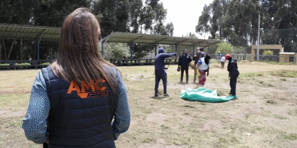 Trabajo comunitario para quienes irrespetan normas de bioseguridad por coronavirus en Quito