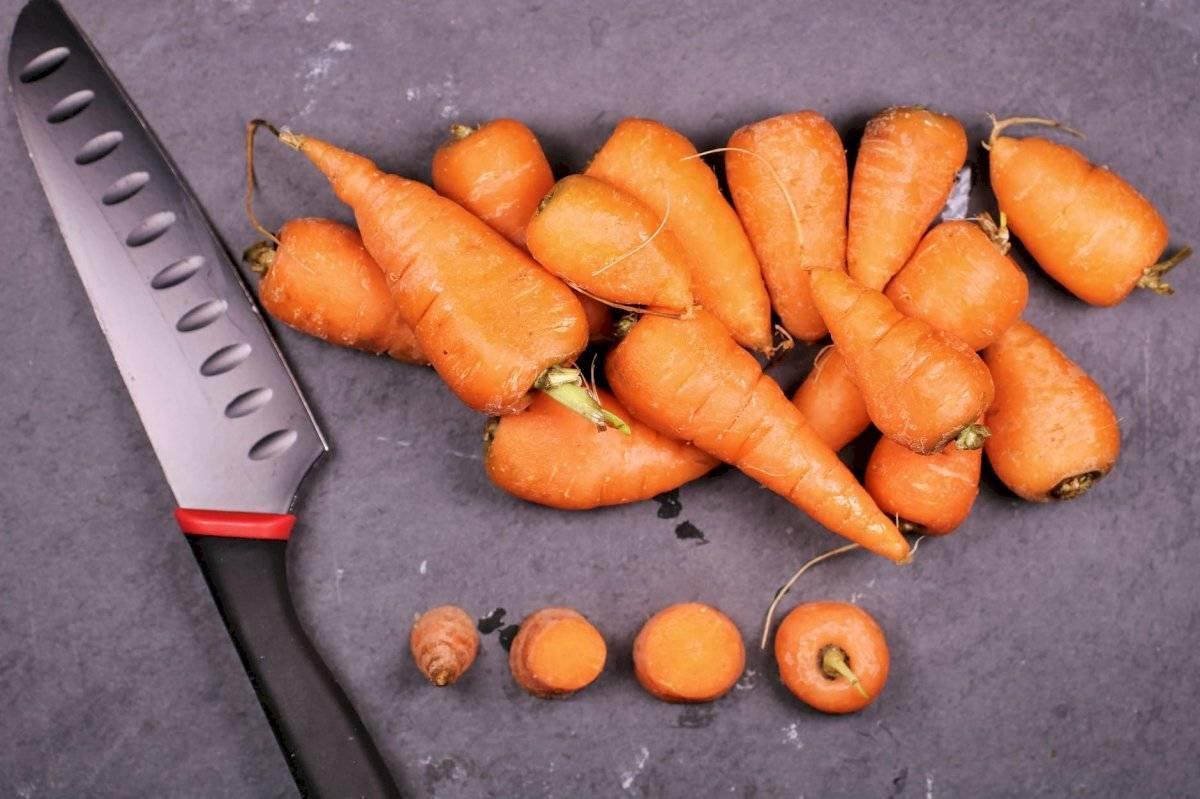 Los canelones de zanahoria son fácil y rápidos de preparar, ideales para una sala y deliciosa cena.