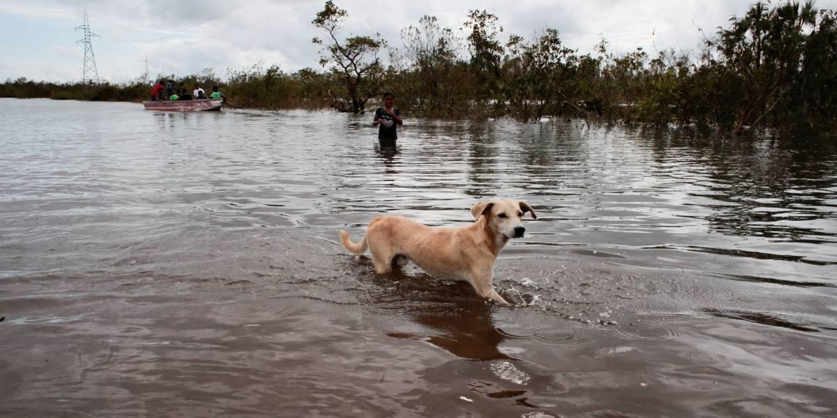 Tempestade Iota causa destruição na América Central; confira imagens impactantes