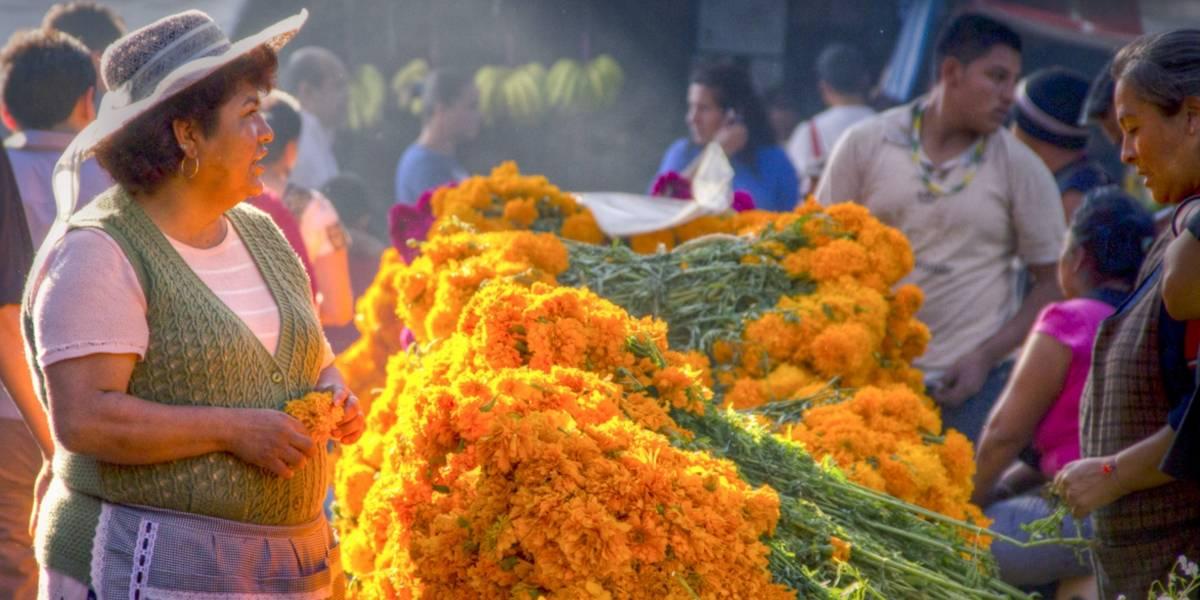 Todo lo que puedes encontrar en el mercado de Jamaica, la florería más grande de México