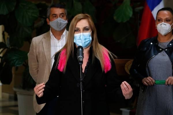 """Diputada Pamela Jiles nuevamente se lanzó contra Briones: """"Su Gobierno lo humilló y lo revolcó en caca"""""""