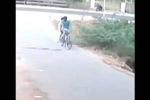 Momento de desespero: Vídeo mostra como cobra que atravessava a rua ataca bicicleta e coloca homens para correr