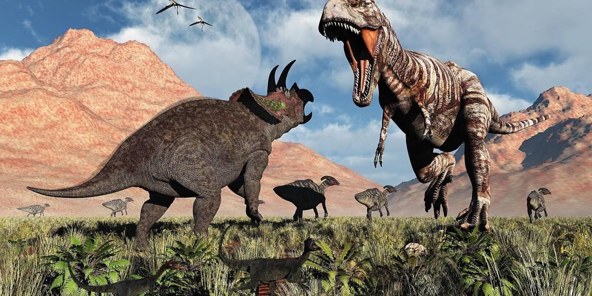 Un T-Rex y un Triceratops pelearon hasta la muerte y así aparecieron 67 millones de años después